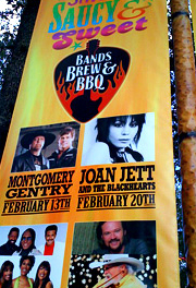 Joan Jett and the Blackhearts - concert poster
