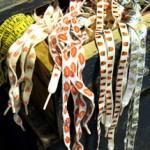 Patterned Shoelaces – My Saving Grace