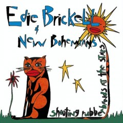 What I Am, Edie Brickell and the New Bohemians Music Video