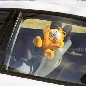 Garfield car accessory