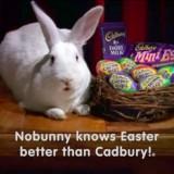 Here Comes the Cadbury Bunny