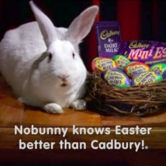 Here Comes the Cadbury Bunny