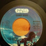 15 on 45: Fifteen Questions about My Forgotten 45 Collection