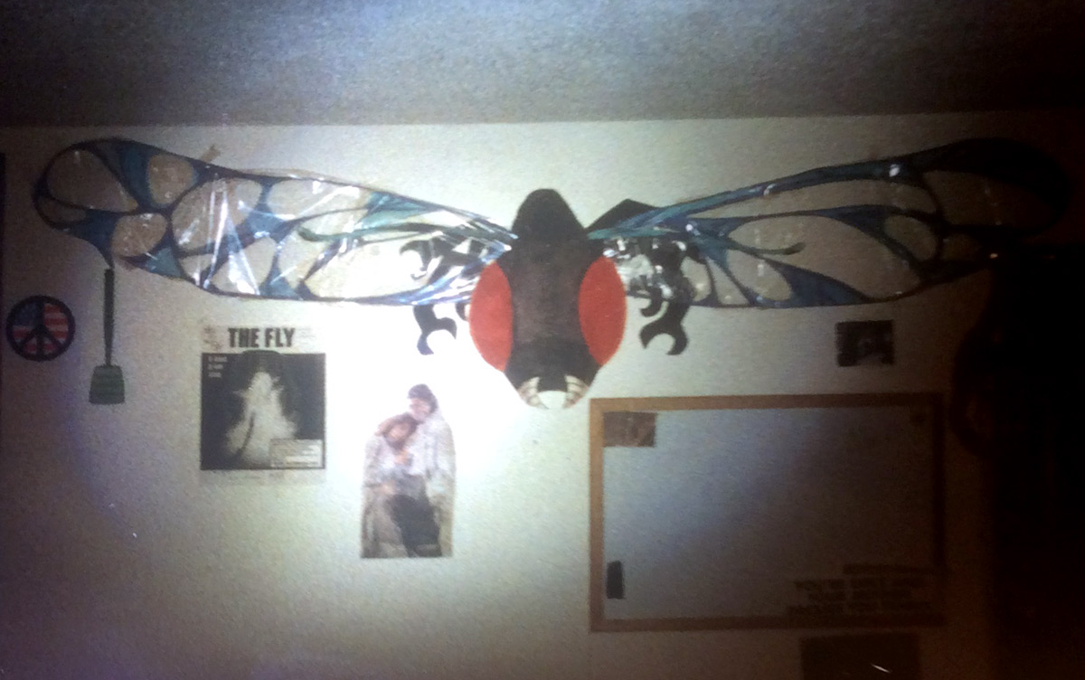 Mark's giant fly drawing, complete with Saran-Wrap wings.