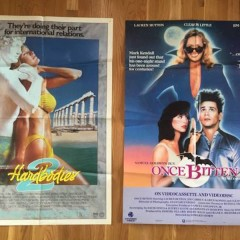 This Guy Is Selling A Treasure Trove Of Tough-To-Find 80s & 90s Movie Posters On Craigslist