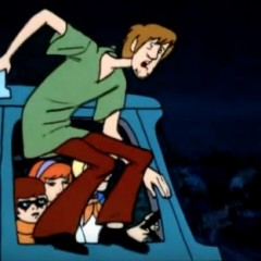 Best Shaggy Costume From Scooby Doo