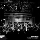 Nada Surf Has a New Live Album: Peaceful Ghosts