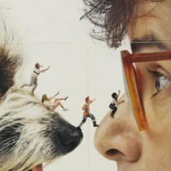 Quiz: Do You Know These 15 Facts From Honey I Shrunk The Kids?